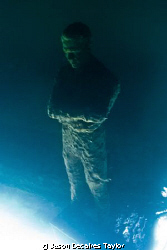 Inverted Solitude 8months on. by Jason Decaires Taylor