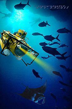 palau - submarine chasing manta - photoshop by Manfred Bail