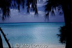 Bahamas - Eluthera by Vito Lorusso