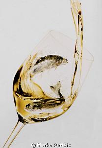 Glass of wine by Marko Perisic