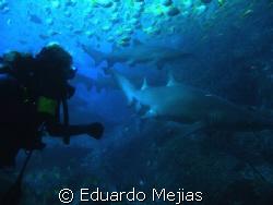 Exiting Fish-Rock Cave. Must make our way through Narrow ... by Eduardo Mejias