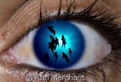 Fish Eye Lens by Karl Marchant