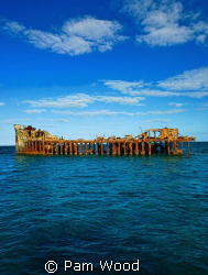 """The Sapona"".  A concrete boat in Bimini used to smuggle ... by Pam Wood"