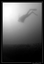 Diver in the Lake Neuchâtel by Daniel Strub
