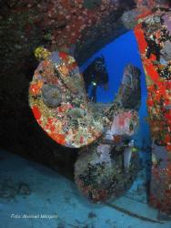 Evelio, Butler Bay Wrecks side, St. Croix. by Abimael Márquez