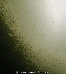 """""""Dark Side Of The Moon""""    Raindrops seen from the under... by Jean-Louis Courteau"""