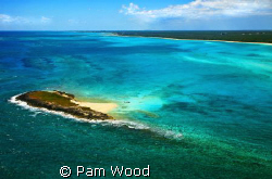 A different perspective of Grand Bahamas from the air. by Pam Wood