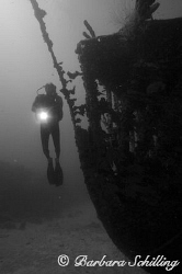 """Diver on the wreck of the """"Fearless"""" by Barbara Schilling"""