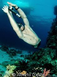 Marco in apnea dive by Alberto D'este