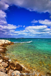 Grand Bahamas West End. by Pam Wood