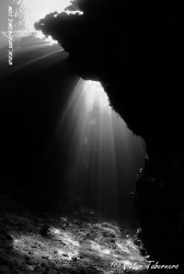 The use of B/W images in UW world is not an easy task. Th... by Victor Tabernero