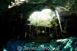Cenote Sugar ball in Quintana Roo Mexico same cave sistem... by Javier Sandoval