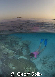 snorkelling in the evening with the liveaboard Oceandance... by Geoff Spiby