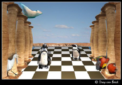 Chess... by Dray Van Beeck