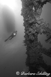 Diver descending on to the Wreck of the RMS Rhone by Barbara Schilling