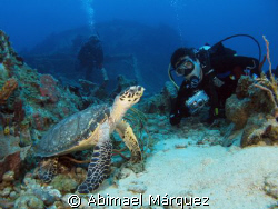 Evelio, Eduardo and the turtle, Grain Barge, St. Thomas. by Abimael Márquez