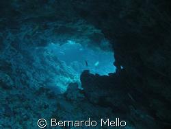 This cavern in the Risca do Zumbi at Fernando de Noronha ... by Bernardo Mello