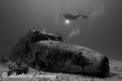 Airplane Wreck with Diver in the BVIs by Barbara Schilling