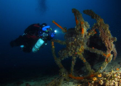 Diver at Misi, Borans Wreck by Andy Kutsch