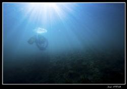 Blue-ray ... by Daniel Strub