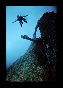 It must be the nitrogen narcosis. Either my dive buddy th... by Johannes Felten