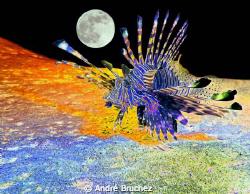 rascasse lunaire by André Bruchez