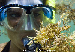 Sargasso Frogfish with my wife Christine in the backgroun... by Tobias Reitmayr