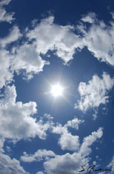 This sunny shot was taken last week during a surface inte... by Steven Anderson