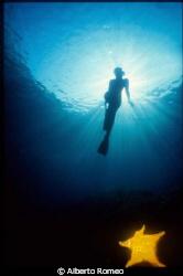 """"""" Backlight Marmaid  with yellow fishstar """".  Nikonos 15... by Alberto Romeo"""