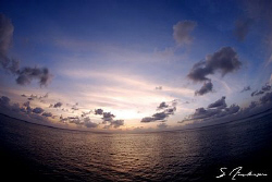 Just a break from diving and enjoying the sunset, this im... by Steven Anderson