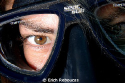 A variation of the good old eye shot.   New species, Poli... by Erich Reboucas