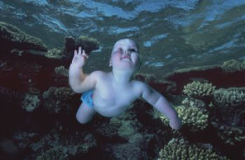 Composite image with reef taken in Red Sea and baby taken... by Len Deeley
