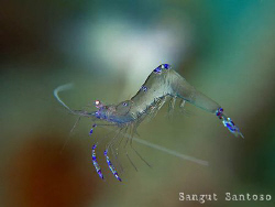 """Flying""