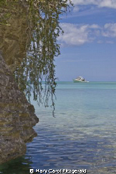 Taken in Sapodilla Bay, Turks & Caicos Islands on an Outb... by Mary Carol Fitzgerald