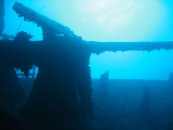 Anti-aircraft gun on Thistlegorm, Red Sea by Thijs Friederich