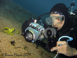 While photographing a tiny painted frogfish, Larry shows ... by Brian Mayes