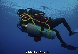 A diver and OWT. by Marko Perisic