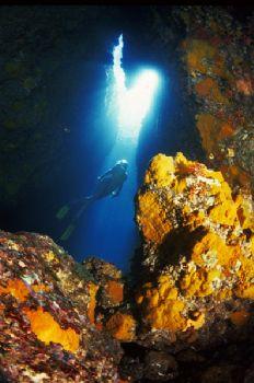 Ustica - Grotta Verde by Giorgio Puppi