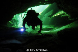 Silhouette of Dive buddy, taken at Blue Springs State Par... by Ray Eccleston
