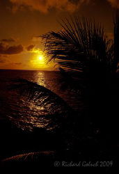 Roatan 2009-Sunset by Richard Goluch