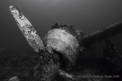Japanese Sea Plane wreck in Palau by Jonathan Regan