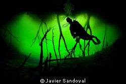 scuba diver siluet in cenote carwash entrance by Javier Sandoval
