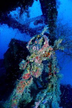 Truk Lagoon - Aikoku Maru, Stern Helm 2 by Eric Bancroft