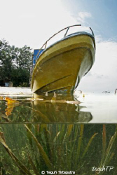 A boat with some kind of sea weed underneath... by Teguh Tirtaputra