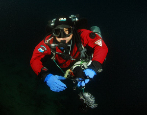 Diver on the way back to surface. by Andy Kutsch