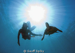 snorkelling in Madagascar by Geoff Spiby