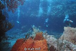 Cozumel - Palanchar Breaks by Walt Hill