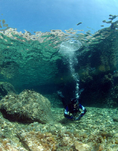 Diver at Zaglav, Island of Pasman by Andy Kutsch