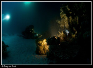 Nightdive with long exposure. 30 sec. by Dray Van Beeck
