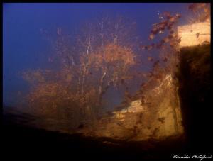 Mysterious view II. by Veronika Matějková
